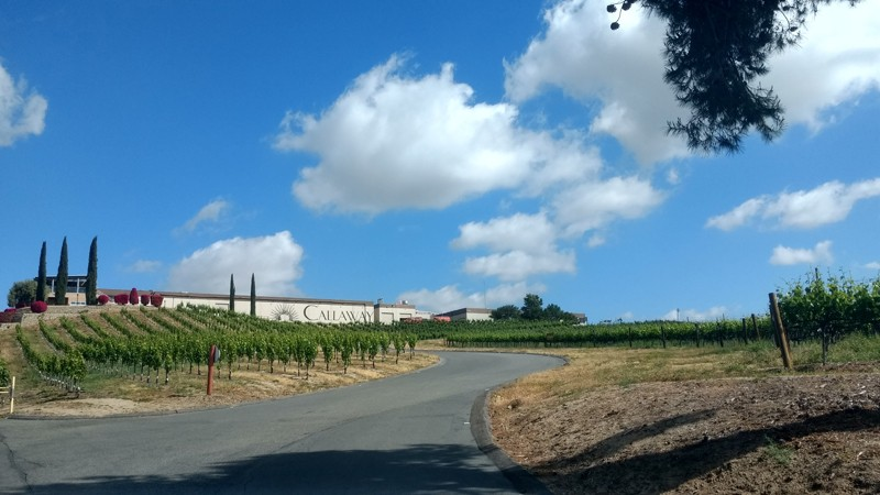 Entrance to Mt Palomar Winery