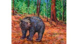 bear800x450.jpg
