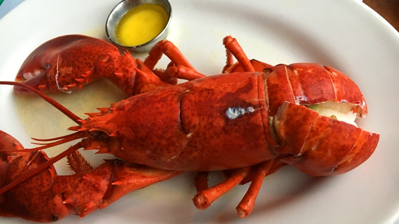 Lobster Reigns Supreme