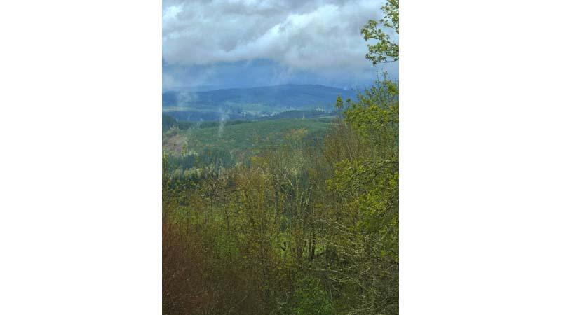 Marks Ridge winery Cascade view