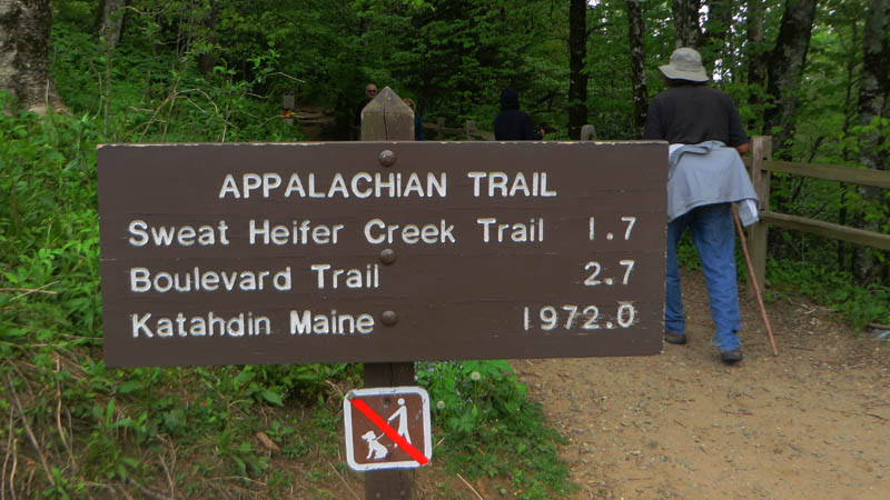 Appalachian Trail by Debbie Stone