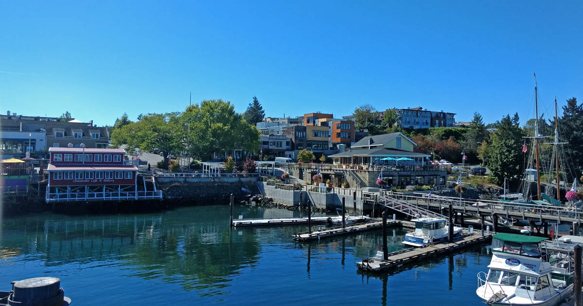 Friday Harbor rises from the Salish Sea