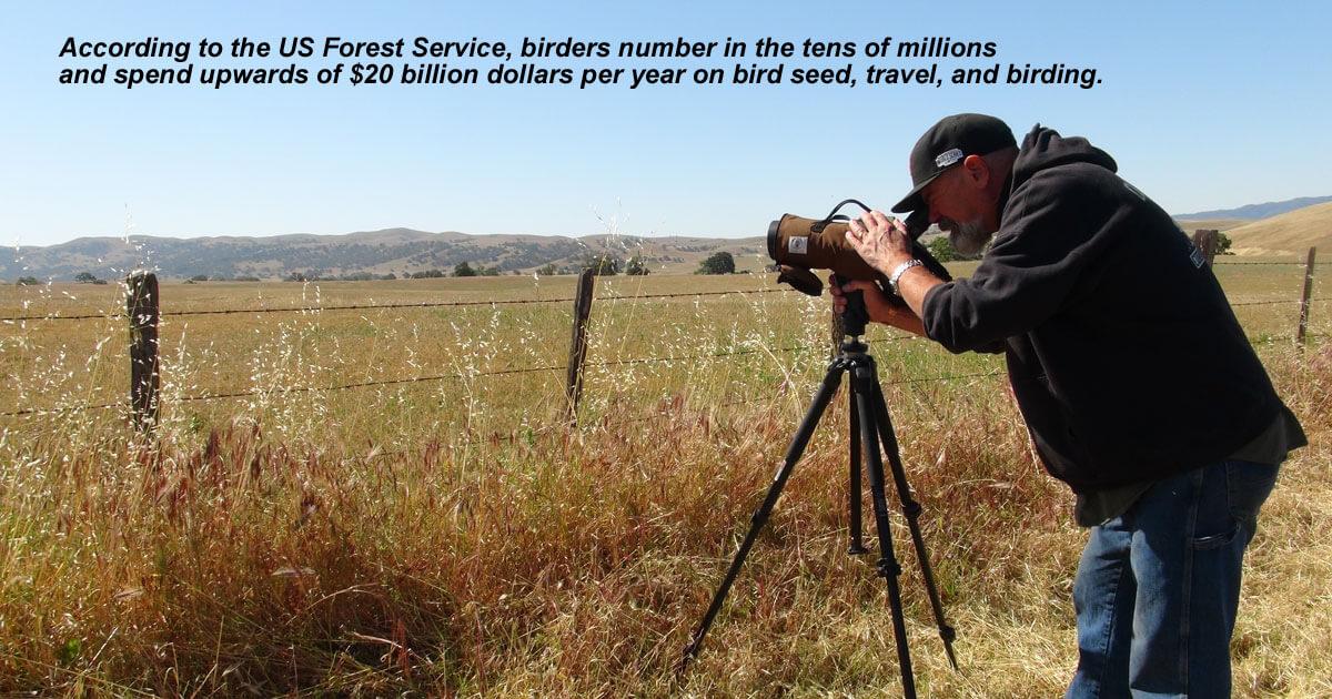 Birding in Tourism