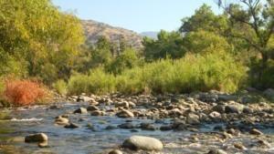 Three Rivers, CA