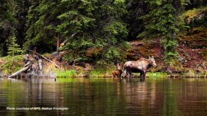 Alaska National Park Units