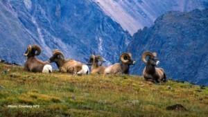Colorado National Park Units