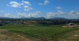 Callaway Winery in Temecula