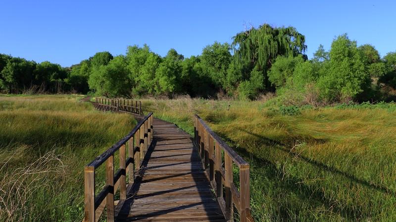 Cienega Trail Boardwalk