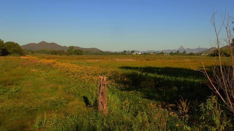Arivaca Cienega Trail