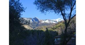 View from Oak Tree Hollow.jpg