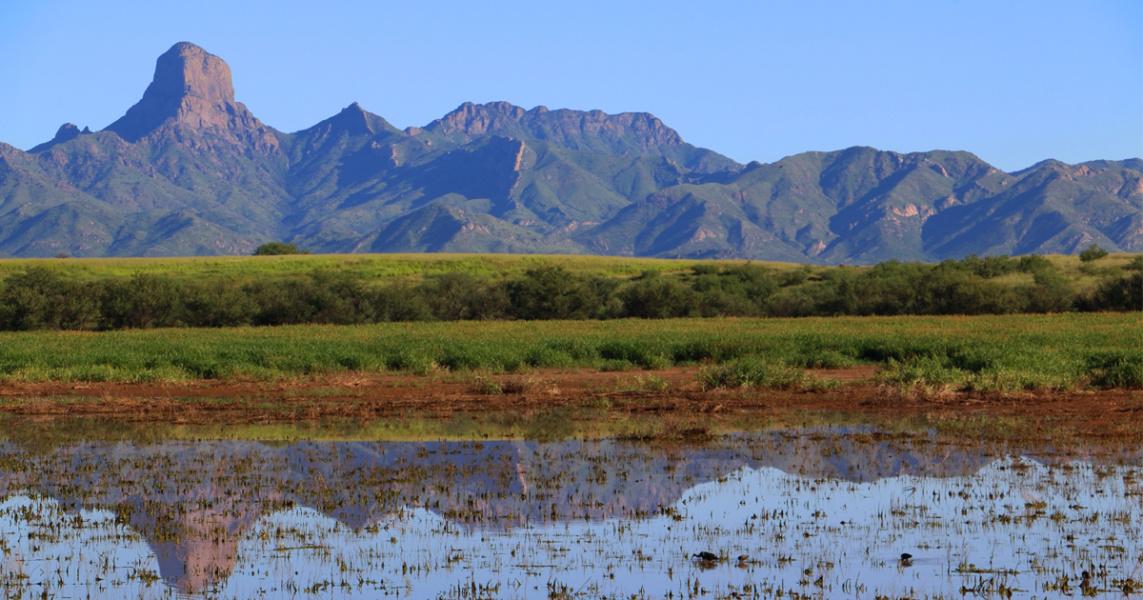 Aquirre Lake, Buenos Aires Wildlife Refuge, Arizona