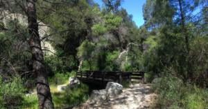 Pinnacles National Park Trail