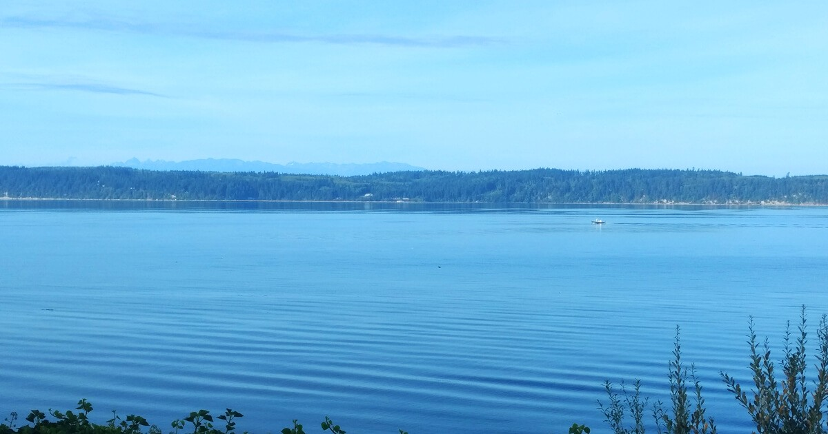 Whidbey Island, Saratoga Passage and the Olympic Penninsula in the background.