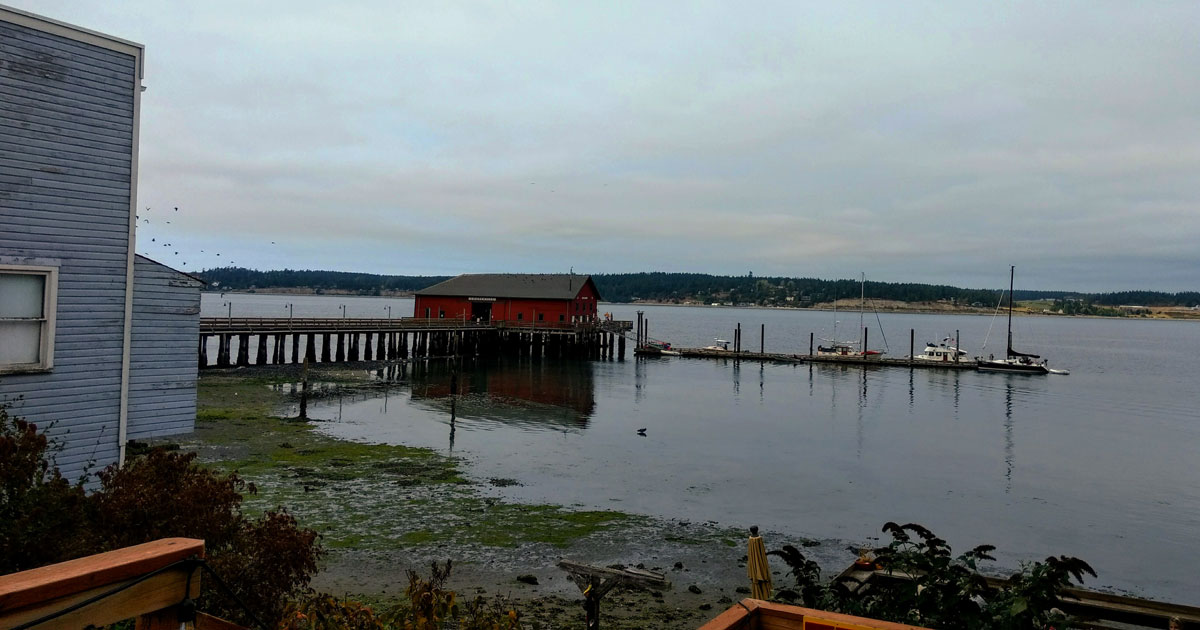 The Marina Pier in Coupeville is a great spot for bird-watching