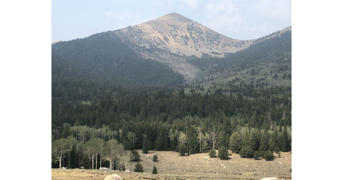 A Range of eco systems at Great Basin