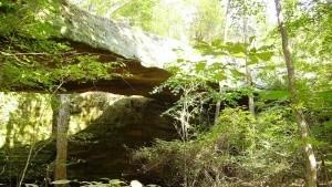 Alabama National Parks & Public Lands