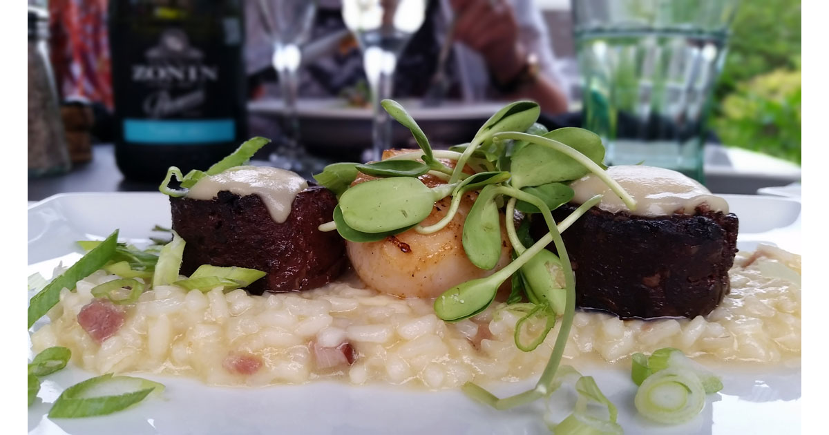 Boudin and scallops on a bed of risotto
