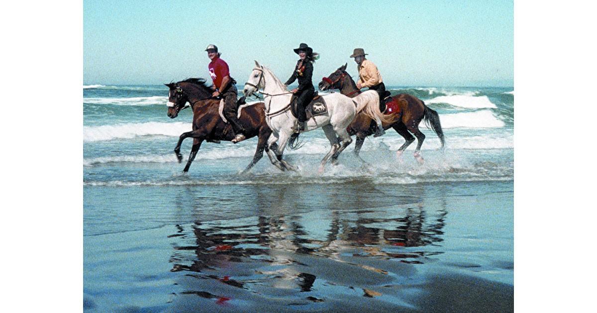 California 10-mile beach Fort Bragg gallop-ocean