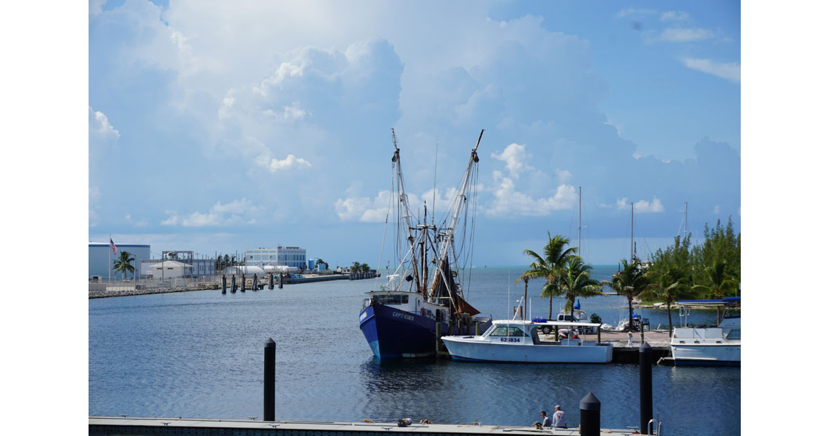 Commercial fishing in the Bahamas