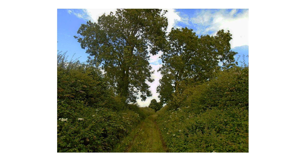 Roman Roads of England