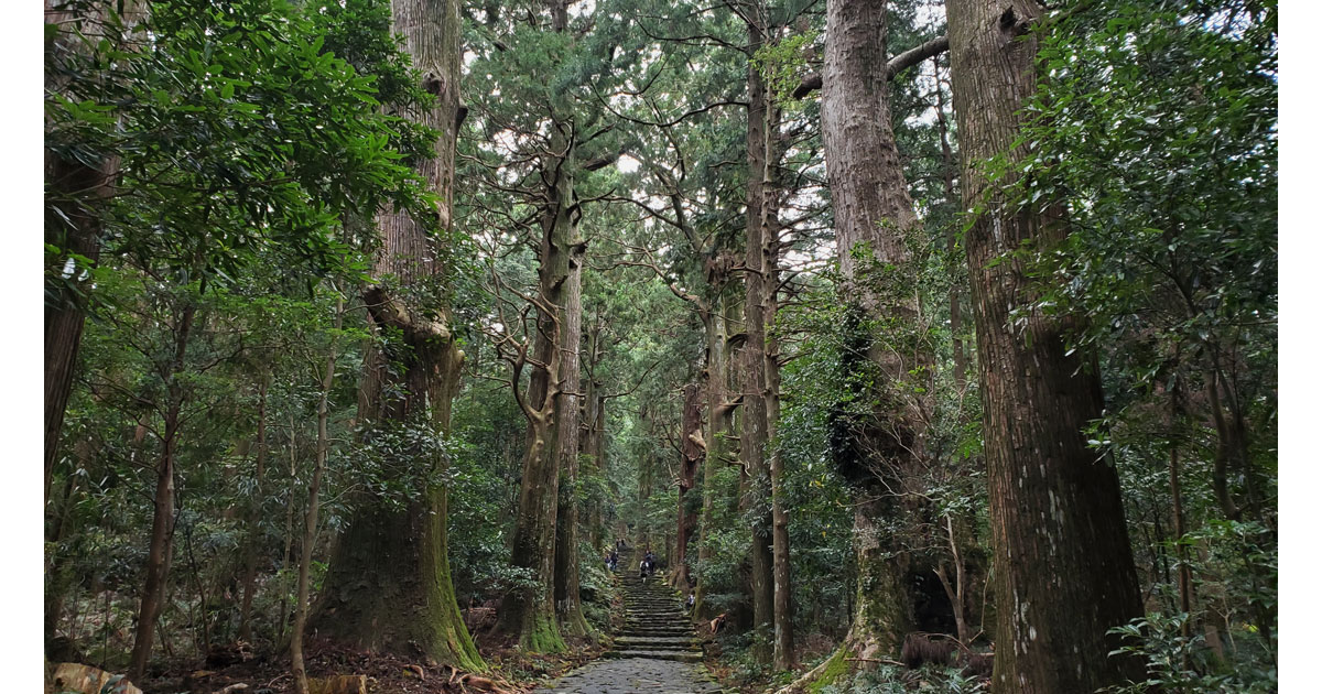 Daimon-zaka slope trail