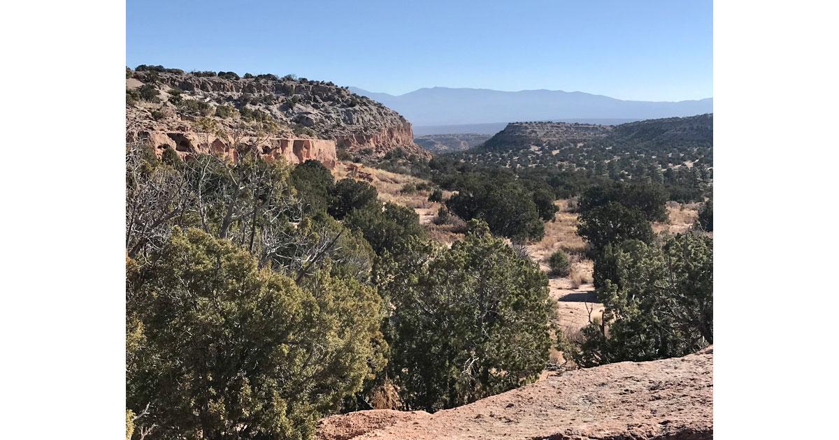 Expansive park vistas