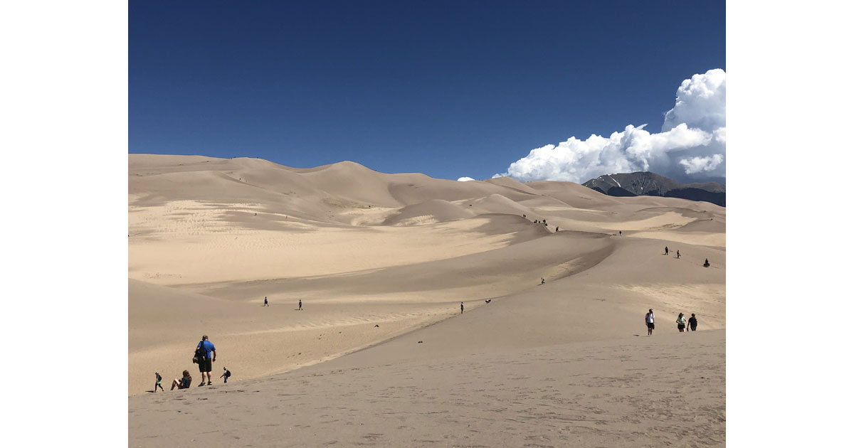 Forge your own trail on the dunes
