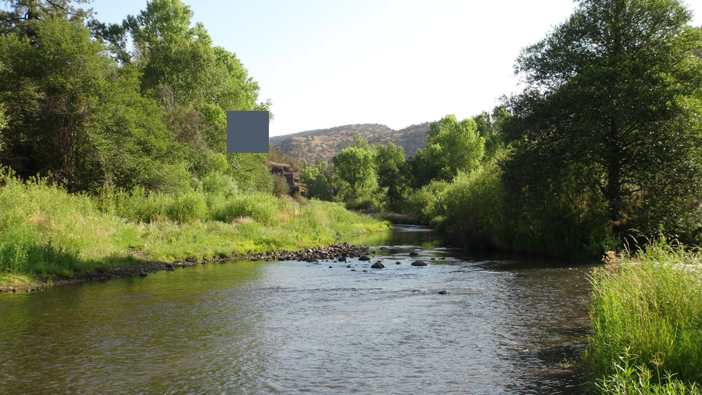 Gila National Forest and Wilderness Area