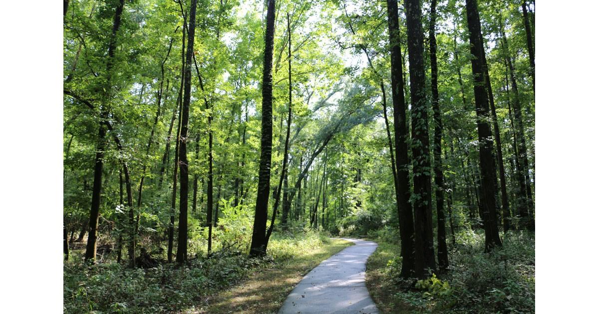 Kingfisher Trail, Pinnacle Mountain Arkansas State Park