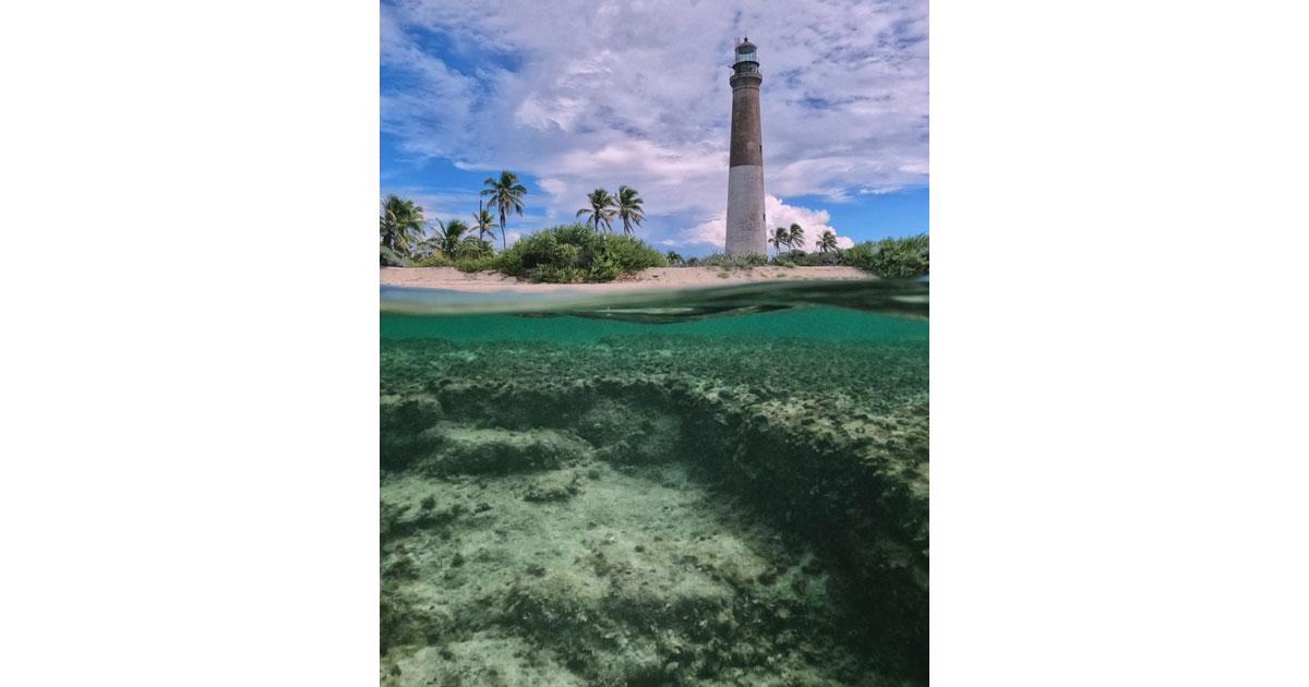 Lighthouse by Carl Stoveland