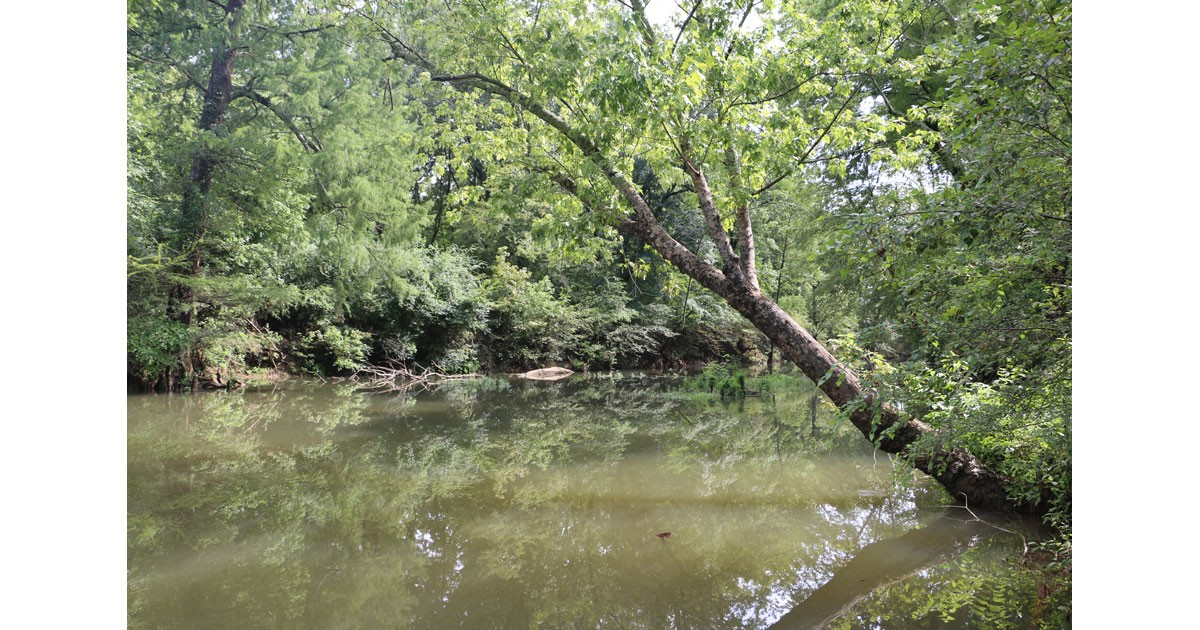 Little Maumelle River, Pinnacle Mountain Arkansas State Park