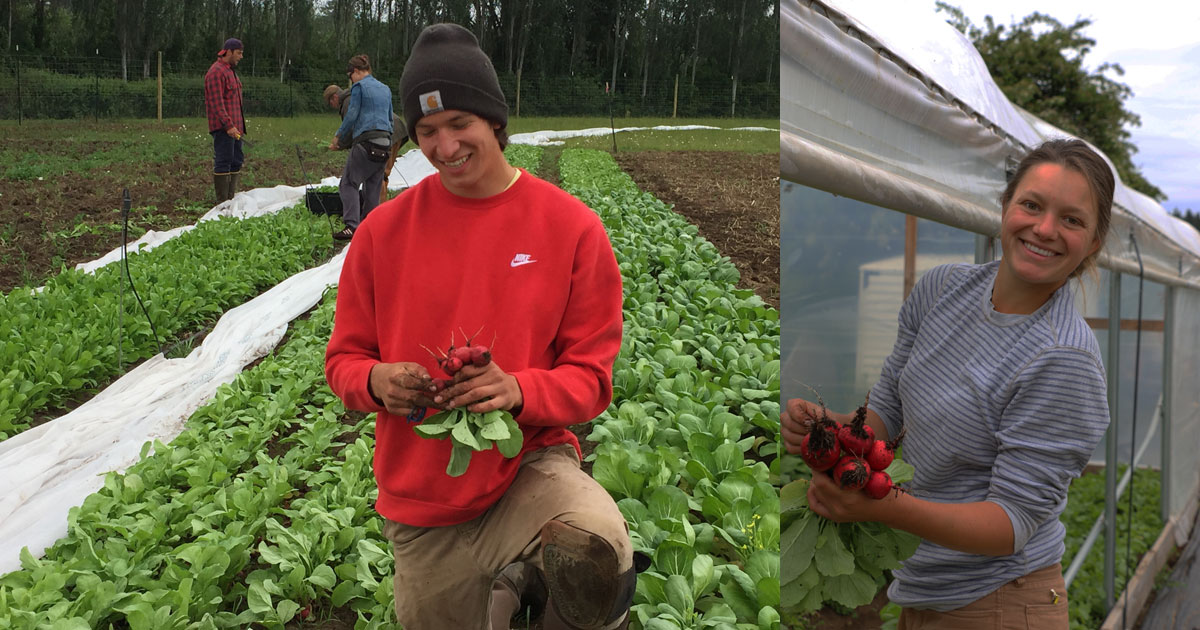 Organic Farming School