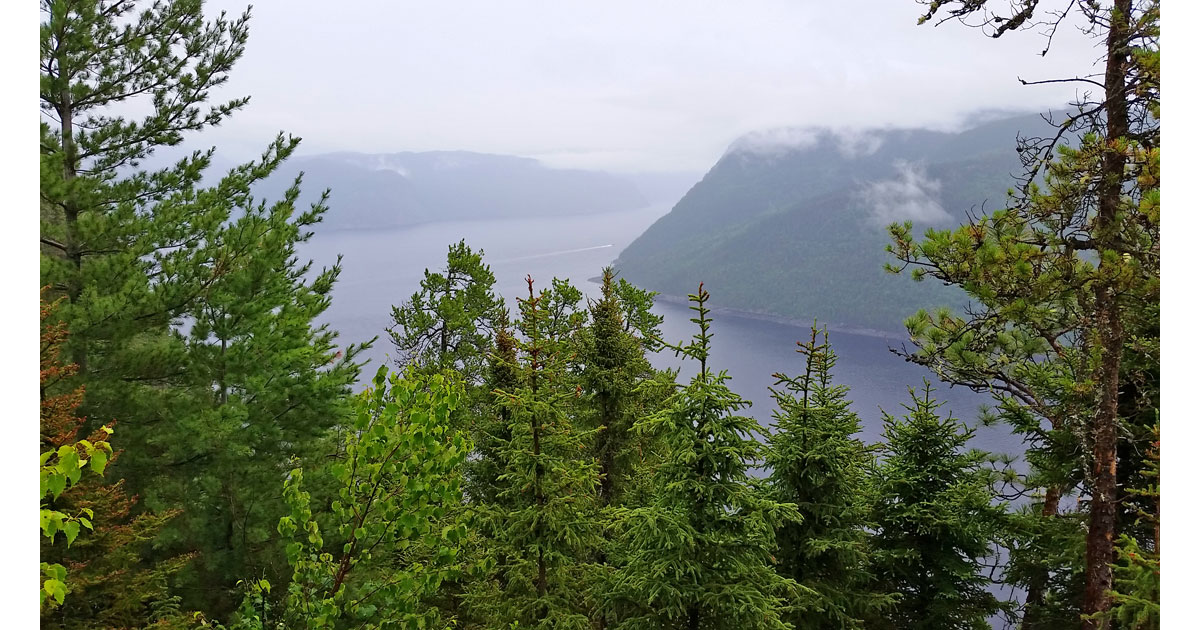Overlooking Saguenay Fjord from trail in National Park.