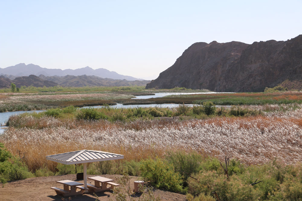 PICACHO STATE RECREATION AREA