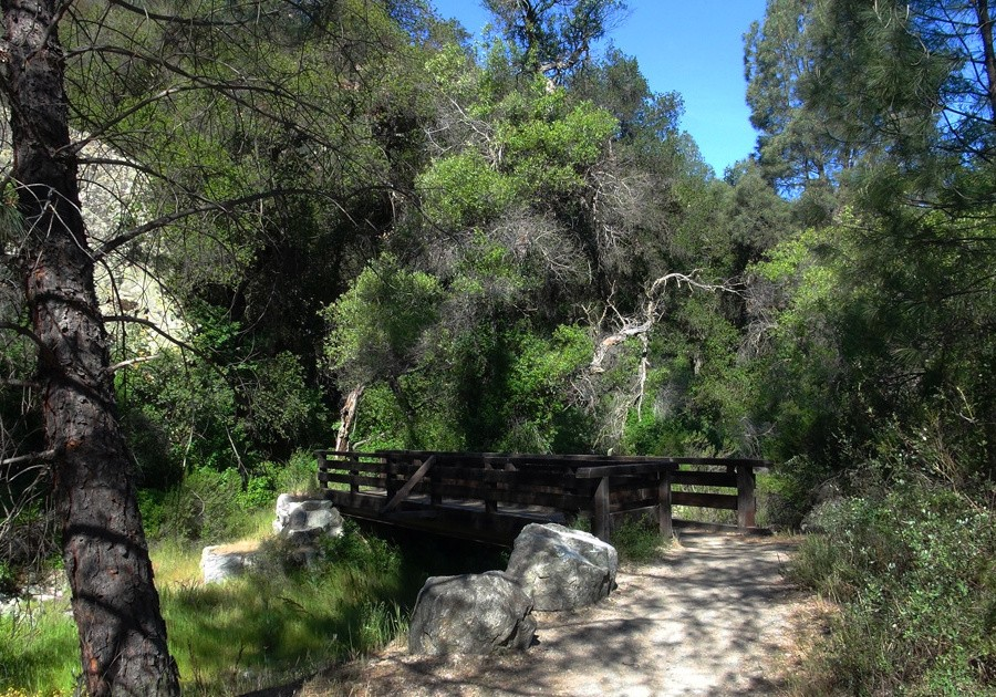 Pinnacles National Park Trail