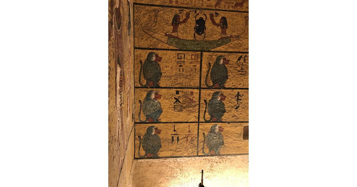 Royal Baboons Symbolism