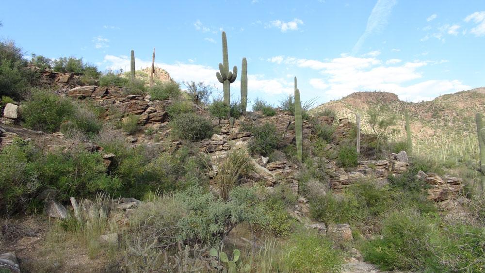Sabino Canyon Recreation Area