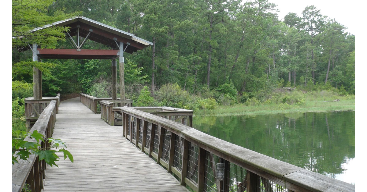South Toledo Bend State Park in Louisiana