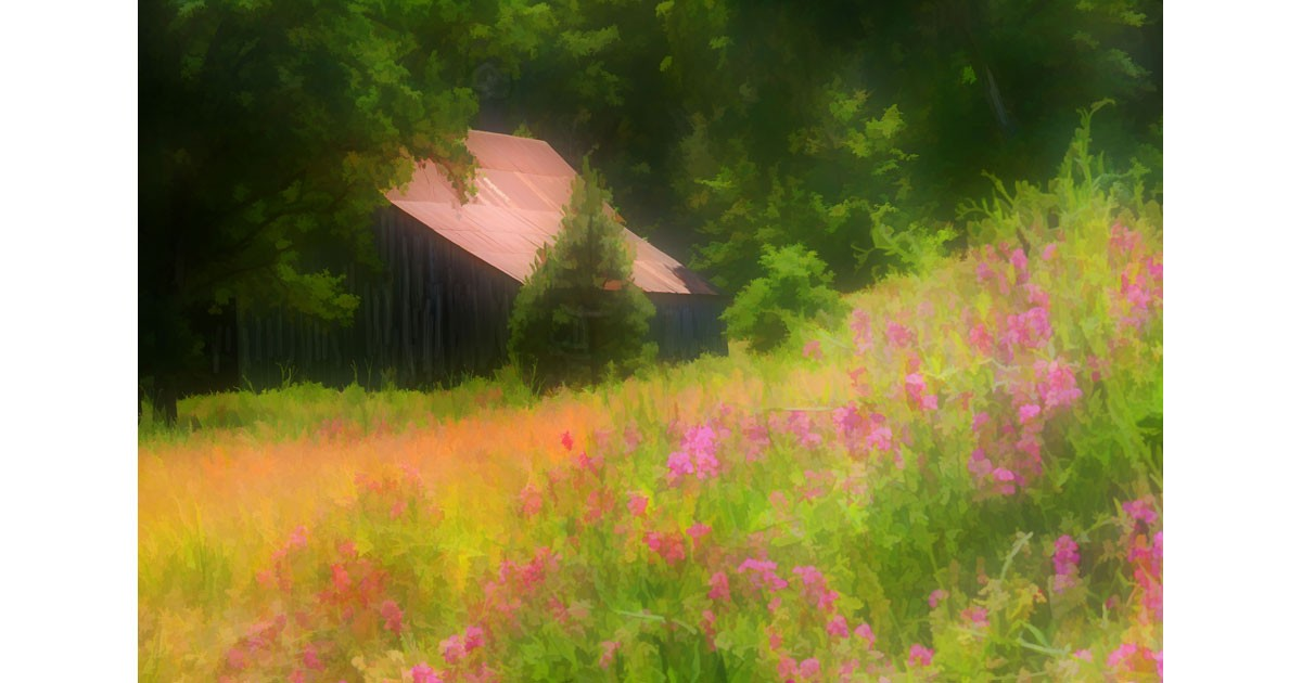Spring Flowering Field, Whiskeytown National Recreation Park. Photo by Jim Schlett