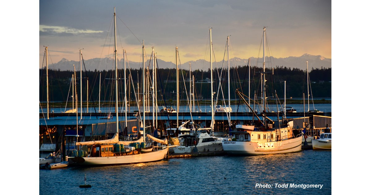 Whidbey Island Yacht Clu by Todd Montgomery