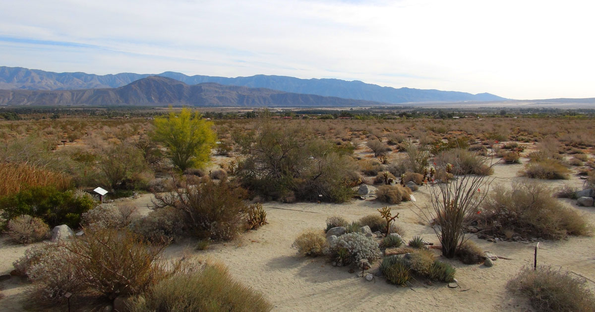 Borrego Springs,, CA