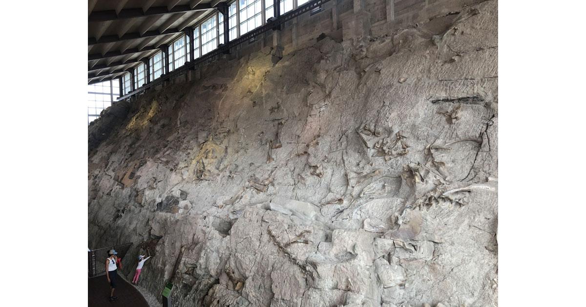 The massive wall of bones.