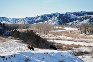 North Dakota Parks & Public Lands