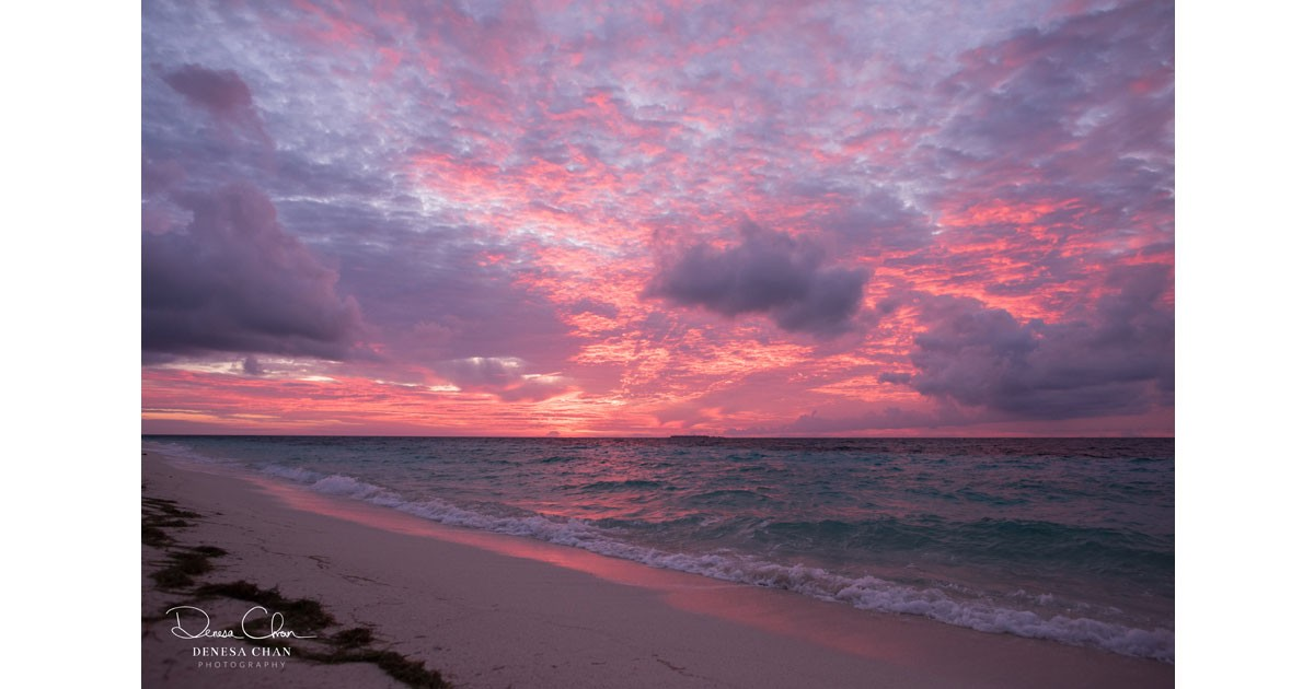 Loggerhead Key Dry Tortugas National Park Sunrise Pink Purple © Denesa Chan W