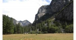 Sequoia Area Events