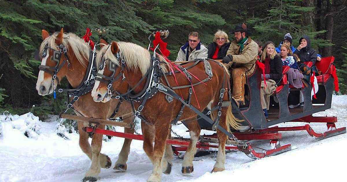 Horse drawn sleigh right - Courtesy Tenaya Lodge