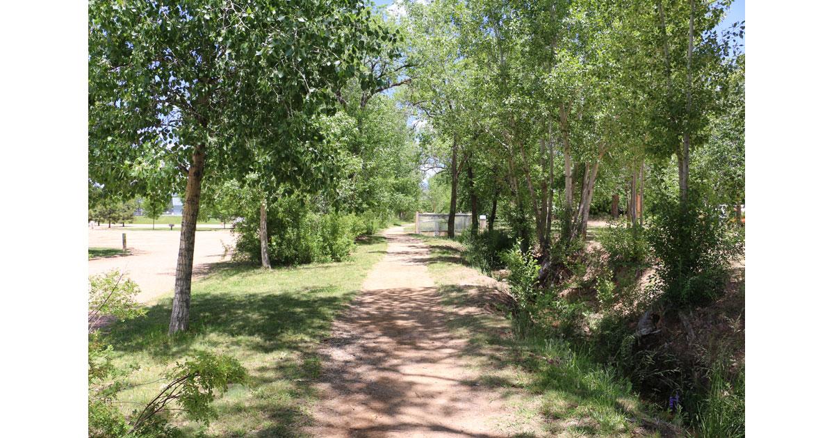 Shaded Walking Paths