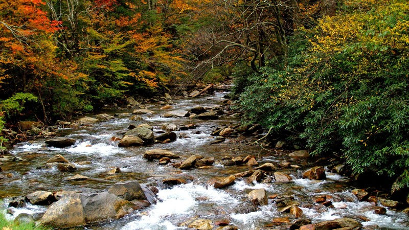 Tennessee National Parks & Public Lands