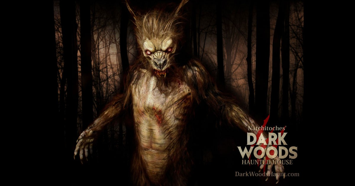 Dark Woods Haunted Attraction