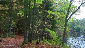 Wisconsin National Parks & Public Lands